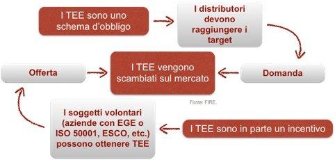 Figura 1 schema TEE