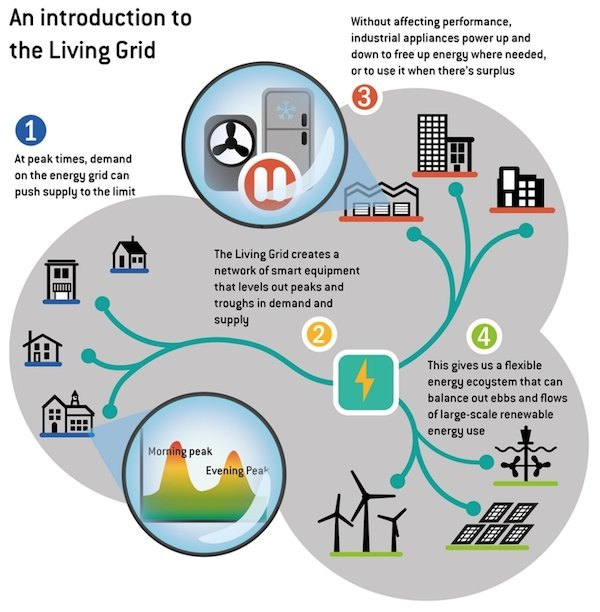full living grid source edie.net
